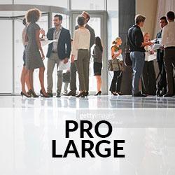 III. PRO LARGE - voor middelgrote en  grote bedrijven, organisaties en grootschalige toepassingen (5)